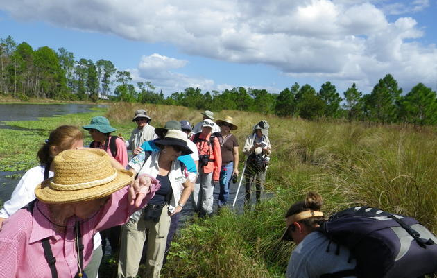 Florida Master Naturalist Program