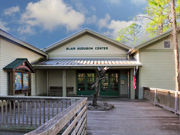 Corkscrew Swamp Sanctuary CLOSED Until Further Notice