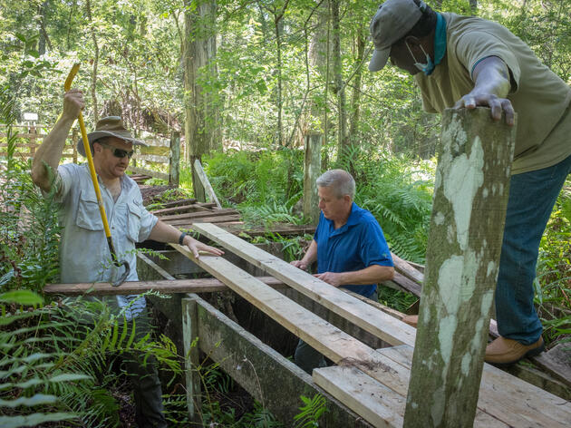 Restoring Our Iconic Boardwalk