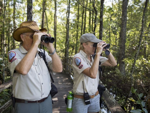Volunteers Step Into Nature to Count Butterflies during Corkscrew's NABA July Butterfly Survey
