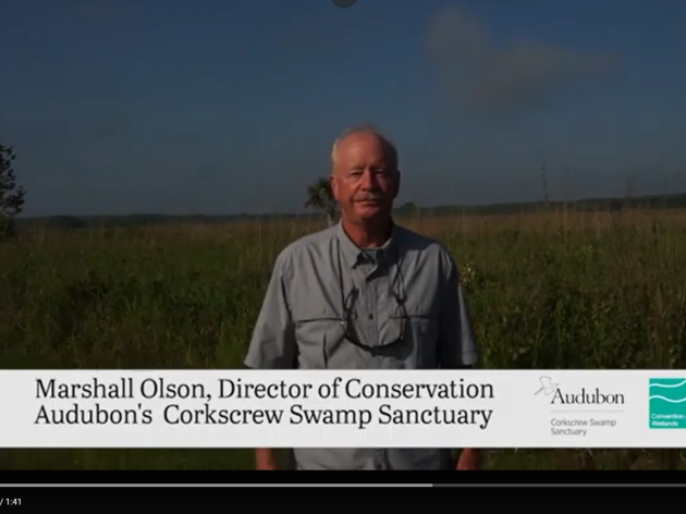 Celebrating American Wetlands Month with Ramsar