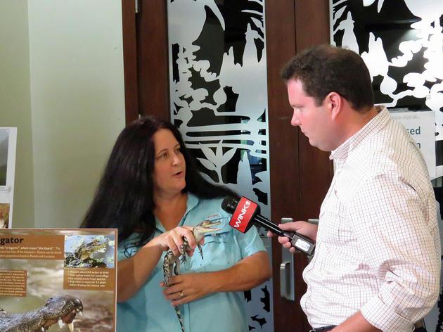Wink News Visits Corkscrew Swamp Sanctuary