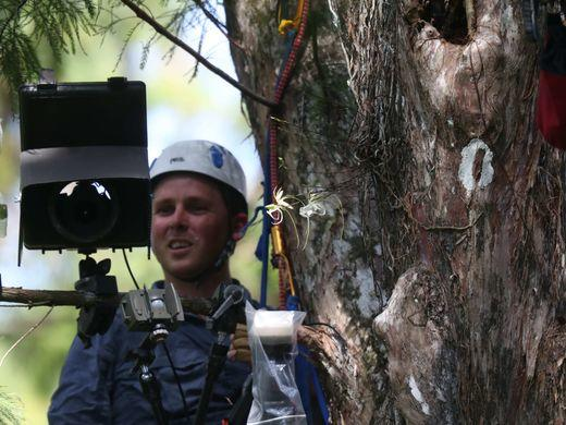 Mac Stone examines the camera in the Cypress Tree
