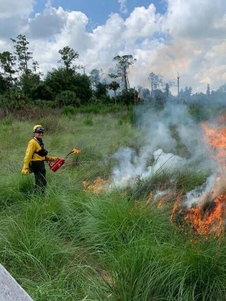 Man igniting prescribed fire